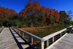 Fishing deck at Potato Creek in North Liberty, Indiana
