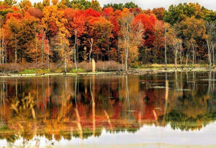 Autumn Colors at Potato Creek, New Liberty, Indiana